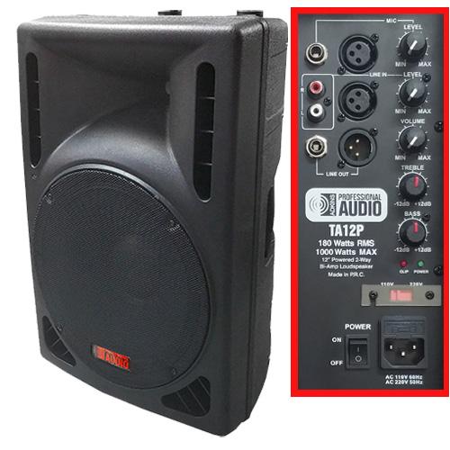 1000 Watt speaker amp