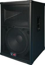 Peavey SP2 2-Way 15 inch Speaker