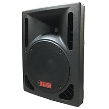 DJ Speaker - 10-inch 800 Watt Bi-Amp 2-Way Powered HD Speaker System by Adkins Pro Audio