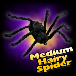 Black Spider - Medium