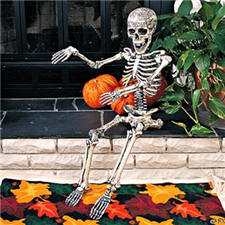 Hard Plastic Posable Skeleton - Halloween Decorations