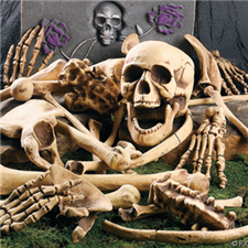 Bag of Bones - Halloween Decorations