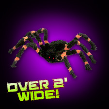 Orange/Black Spider - Small