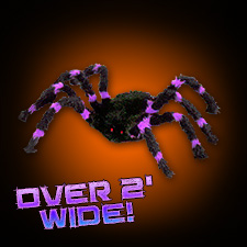 Purple/Black Spider - Small
