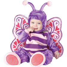 Baby Butterfly