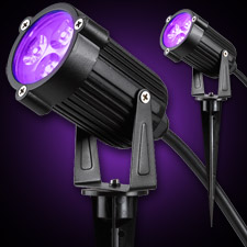 LED Spot Light - Black Light