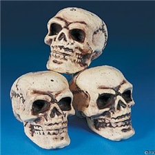 Foam Skulls - Halloween Decorations