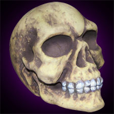 Blow molded Skull - Halloween Decoration
