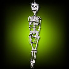 Skeleton w/Barbed Wire