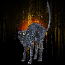 Creepy Cat - Hissing