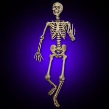 Pose & Hold Skeleton