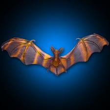 Sheer Bat - Orange
