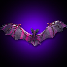 Sheer Bat - Purple