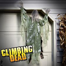 Climbing Dead Green