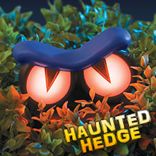 Haunted Hedge