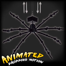 Dropping Spider with Sound
