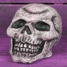 "Blow Molded Skull 6"" - Halloween Decorations"
